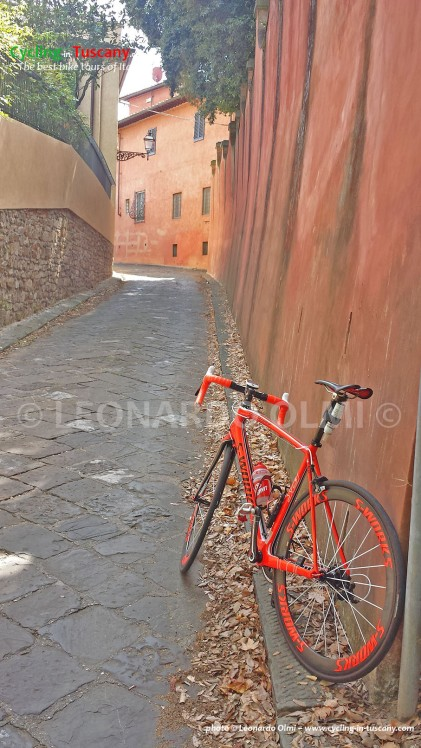Italy, Tuscany, Florence, cycling bike tours