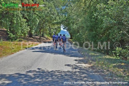 Italy, Tuscany, Chianti, cycling, bike tours