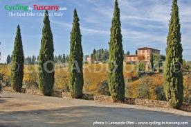 Italy, Tuscany, Chianti, cycling bike tours
