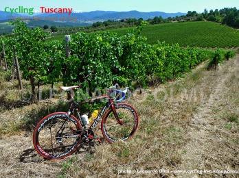 Italy, Tuscany, Chianti, cycling
