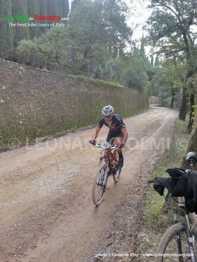Italy, Tuscany, Greve in Chianti, mountainbike cycling tours
