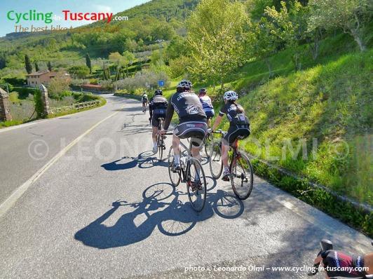 Italy, Tuscany, Fiesole, cycling bike tours