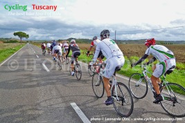 Italy, Tuscany, Maremma, cycling bike tours