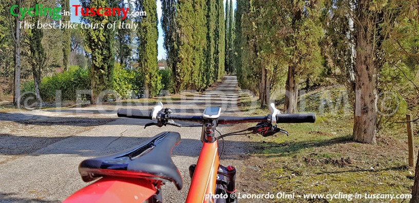 Italy, Tuscany, Chianti, mountainbike cycling tours