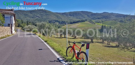 Italy, Tuscany, Chianti, cycling bike tours